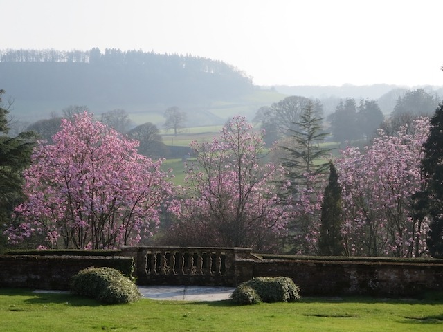 Sidbury Manor spring